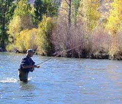 Utah Fly Fishing Tours