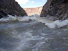 Westwater Canyon One Day Rafting Tour